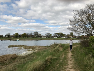 A good walk is one of the many things that can clear the left side of your brain…
